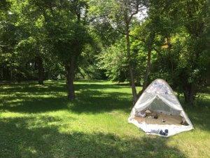 <続>公園やビーチに持って行きたい 気になる簡易テント